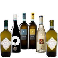 Confezione per la degustazione di 6 bottiglie di Lugana